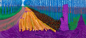Hockney Key 41