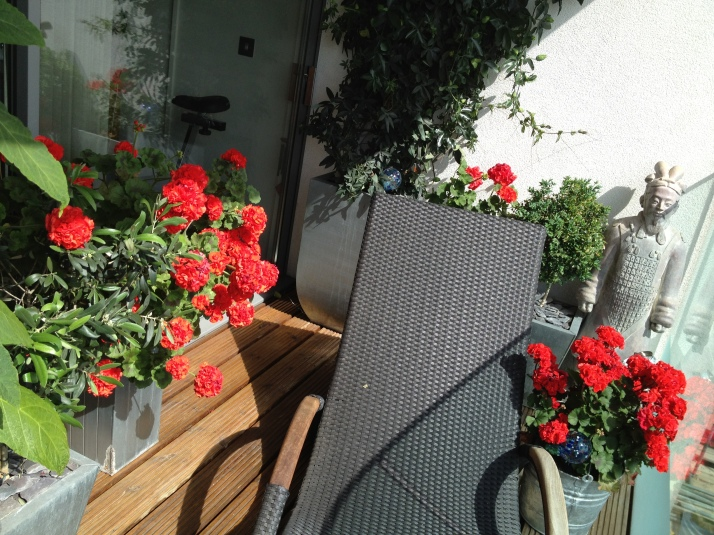 My balcony on a wider view – a lounger to enjoy the sun and geraniums aplenty