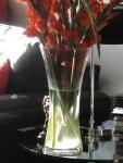 Light shines through a vase of gladioli