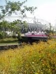 Flowers enhance the concrete edges of the park
