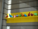 Multicoloured pigeons by Patrick Murphy are currently covering the Walker Gallery