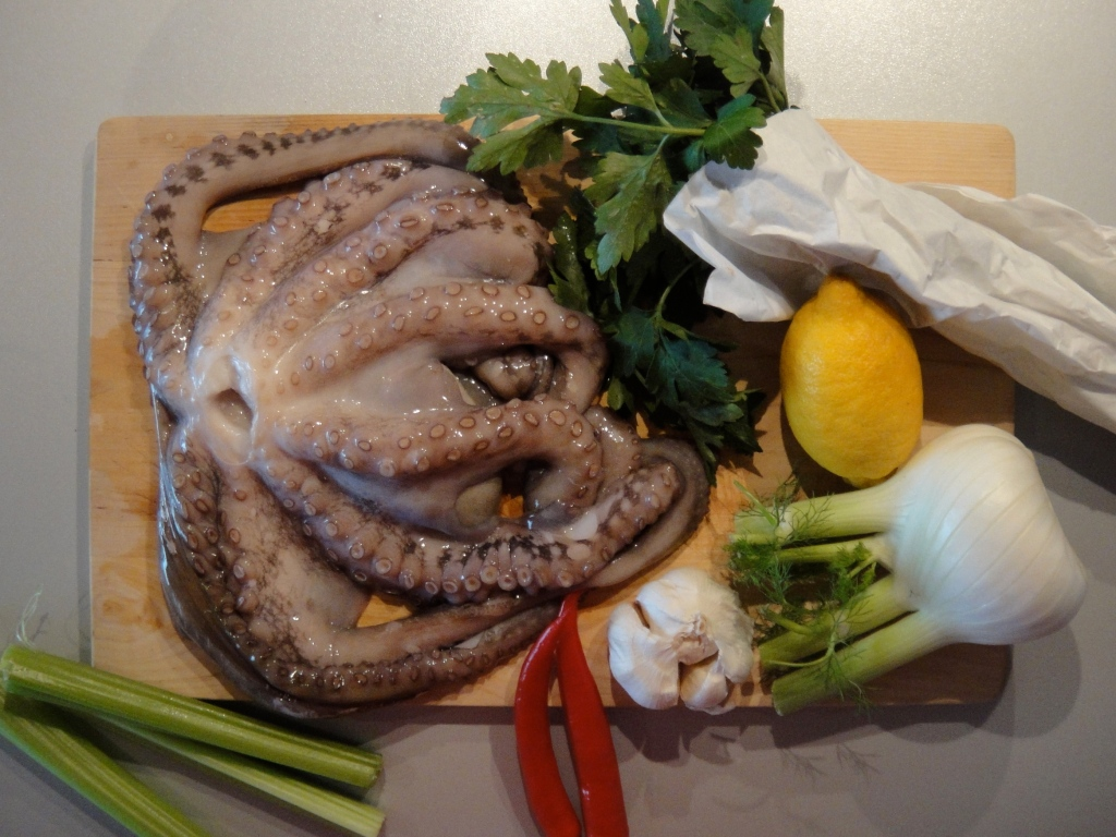 Beautiful raw octopus