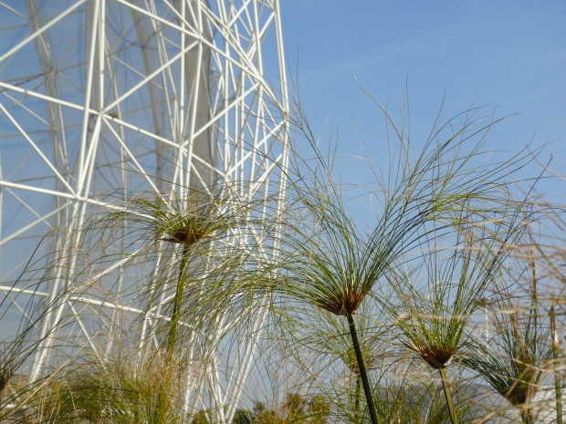 "The park's ""Wetlands"" structure"