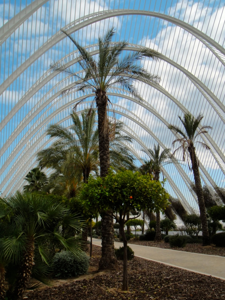 Inside L'Umbracle