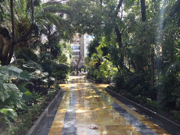 The Alameda park after a shower