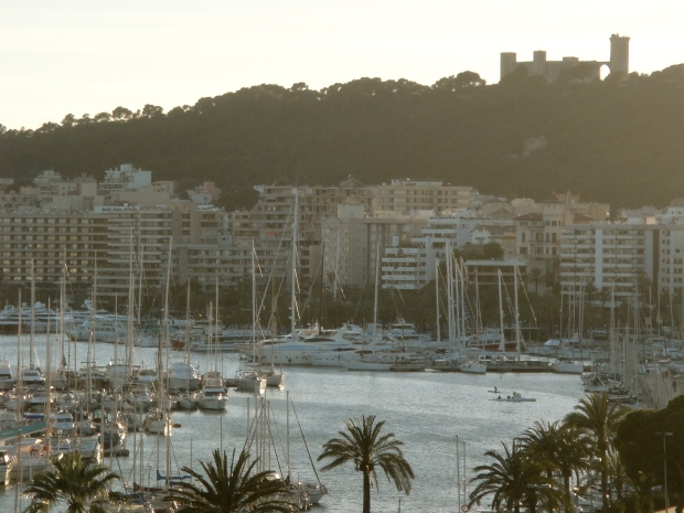 View over Palma's marina