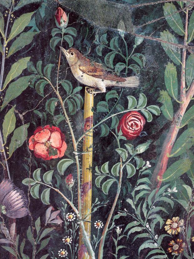 pompeii_garden