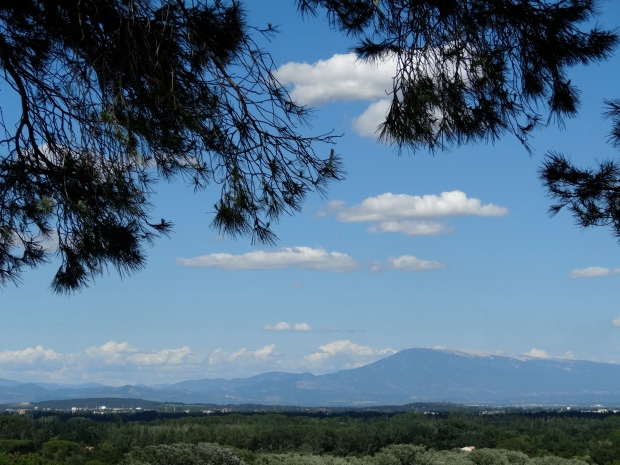 The Provençal promised land