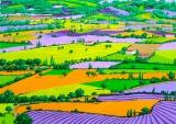 Composition 5: Provençal Patchwork (2013 © Nicholas de Lacy-Brown)