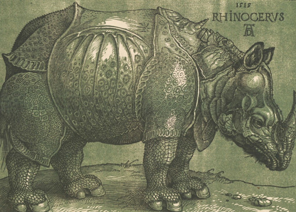 Albrecht Dürer, Rhinoceros (1515 and c.1620 - the highlights)