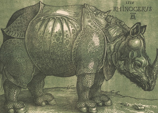 Albrecht Dürer, Rhinoceros (1515 and c.1620 - the highlights)