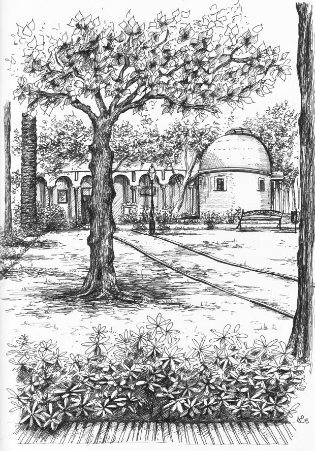 Parque de la Constitucion (2015 © Nicholas de Lacy-Brown, pen on paper)