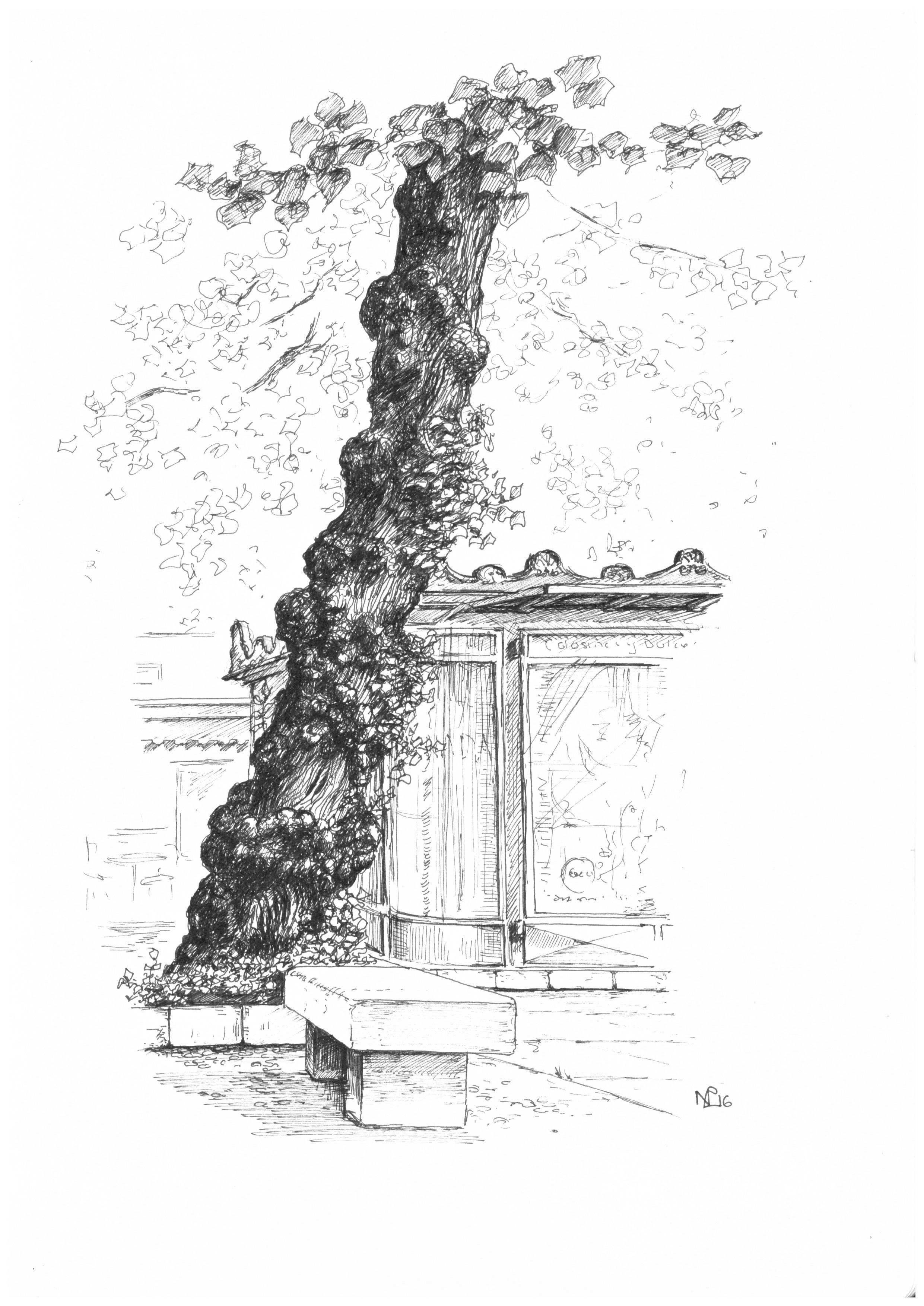 Granada Bib Rambla