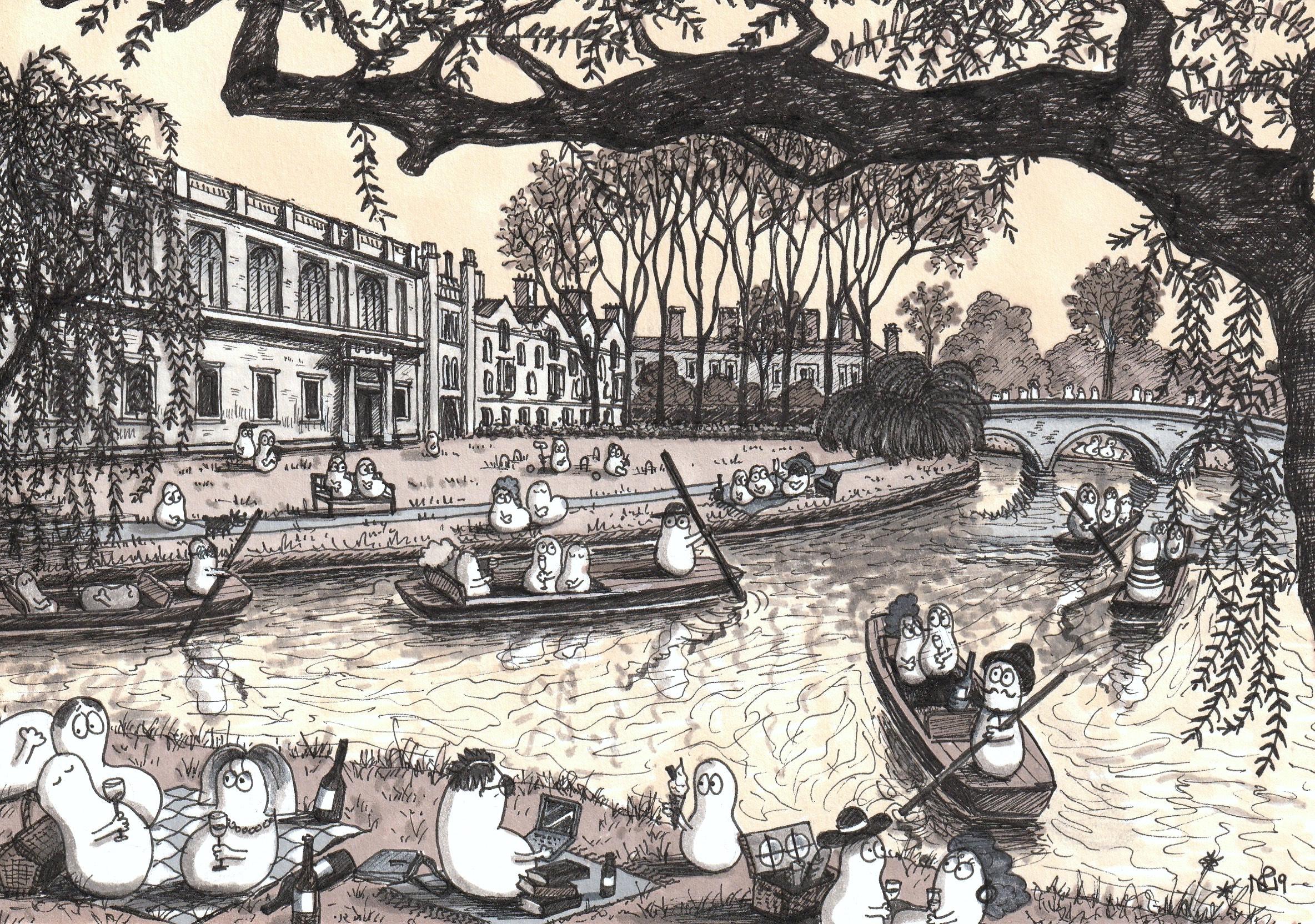 Cambridge Norms